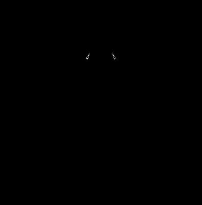 CARDAN 2+ ACCEUIL DAMNGOODCARAMEL